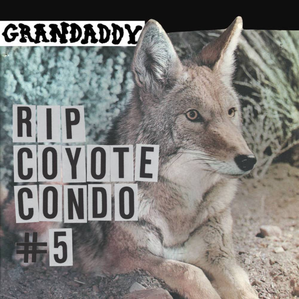 Grandaddy, RIP Coyote Condo #5, single, cover